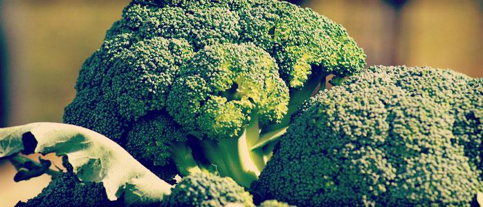 Ein köstlicher Auflauf mit Brokkoli und Hackfleisch