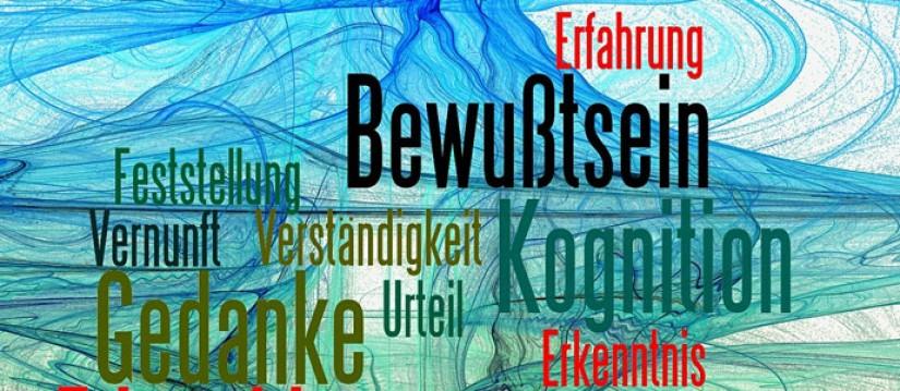 Verständnisprobleme im Bundestag durch noch zu übersetzende Texte.