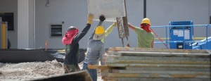Der Schwarzarbeiterfall