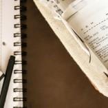 Über die Grundprinzipien des Ertragssteuerrechts
